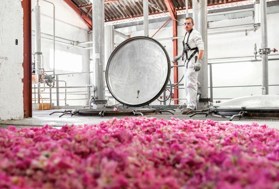 L'lalmbic pour la distillation des roses de la société Firmenich.