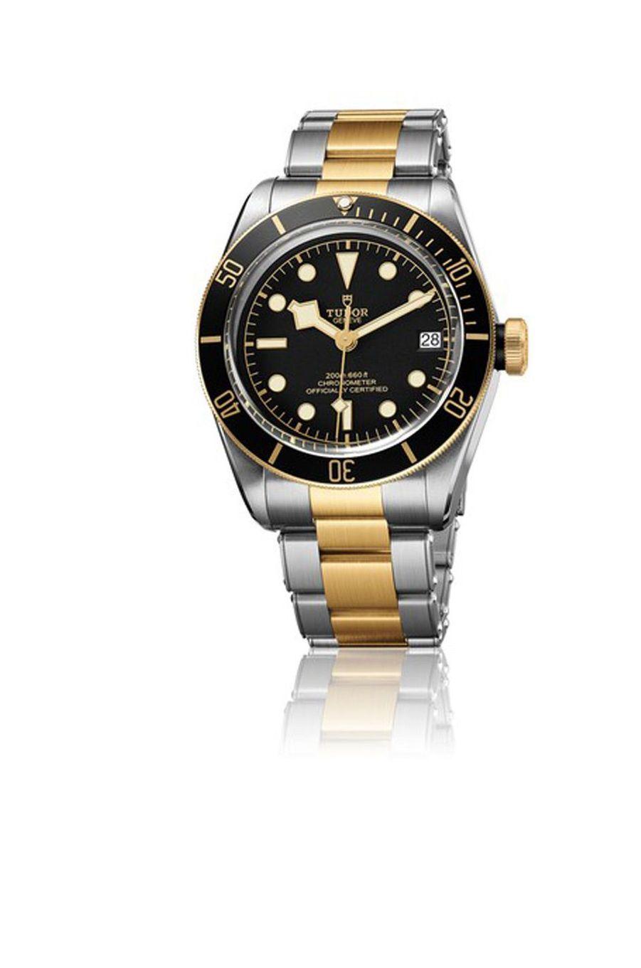 Héritage Black Bay, boîte en acier, 41 mm de diamètre, mouvement automatique, bracelet en acier et or jaune. 4 690 €. Tudor.