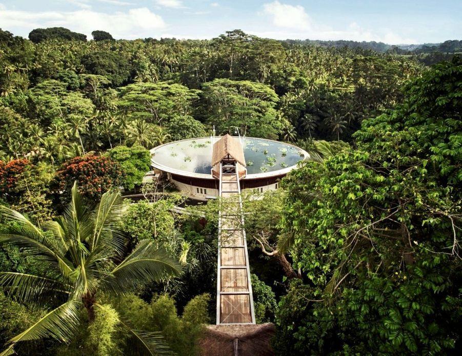 Dans ses deux hôtels de Bali, le groupe Four Seasons propose des expériences chamaniques et met en valeur les traditions spirituelles locales autour du Sekala (monde physique) et du Niskala (monde invisible et énergétique). Djik Dewa est un guérisseur spécialisé dans l'énergie kundalini à Sayan, au cœur de la jungle. Il « scanne » le corps pour réactiver et rééquilibrer les sept chakras principaux. Prix : 100 € la séance
