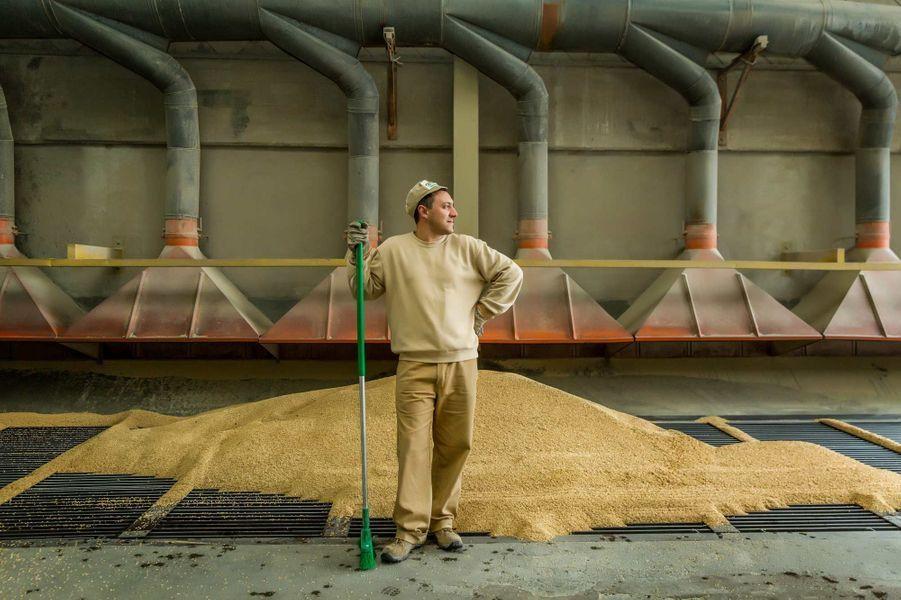 Les usines de Riso Gallo, premier producteur d'Europe de riz pour risotto (un riz rond, variétés arborio et carnaroli, qui absorbe mieux les condiments).