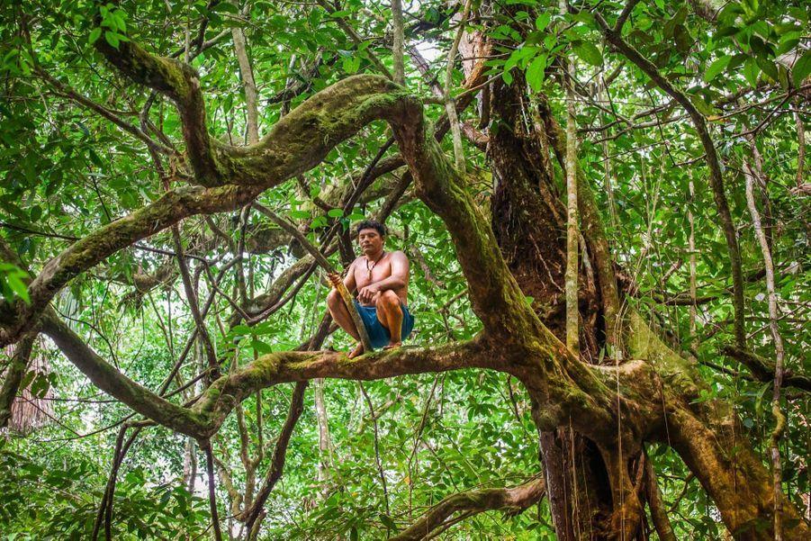 D'ordinaire, votre contact Airbnb vous attend à la porte de la location. Dans la formule « aventures », c'est perché sur un arbre.