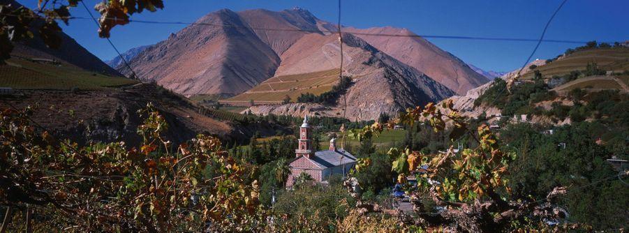 Dans la vallée du rio Hurtado, où l'on produit le pisco, un alcool très prisé