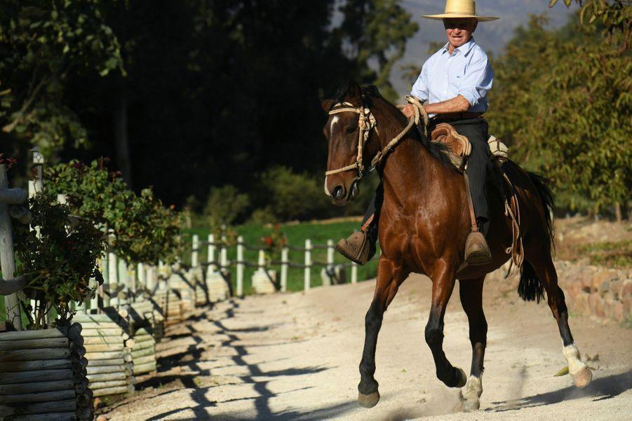 Hector, le palefrenier de l'hacienda Malpaso