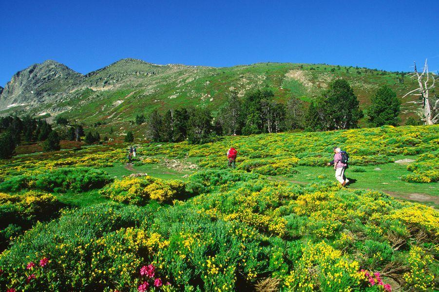 En chemin vers le pic du Canigou, unhaut sommet oriental de la chaîne des Pyrénées.