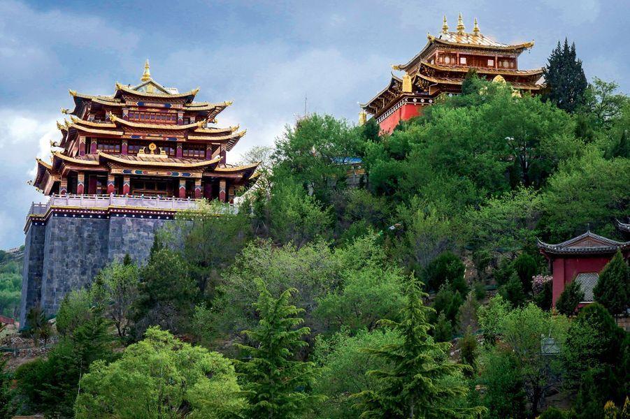 Il y a plusieurs siècles, dans les armoires de bois précieux de ces temples « dormaient » les meilleurs thés destinés aux divinités.