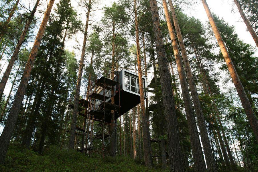 Le Treehotel, à Harads, dans les forêts vierges de Suède.