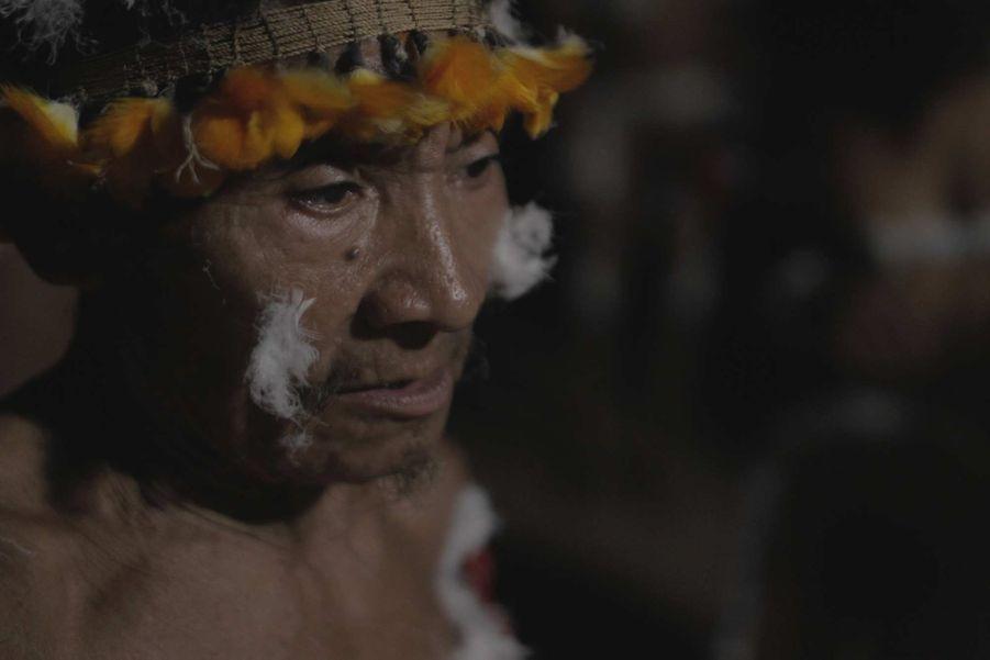 Un juge fédéral brésilien a récemment employé le terme de génocide pour qualifier la situation des Awá. Ils sont la tribu la plus menacée au monde.