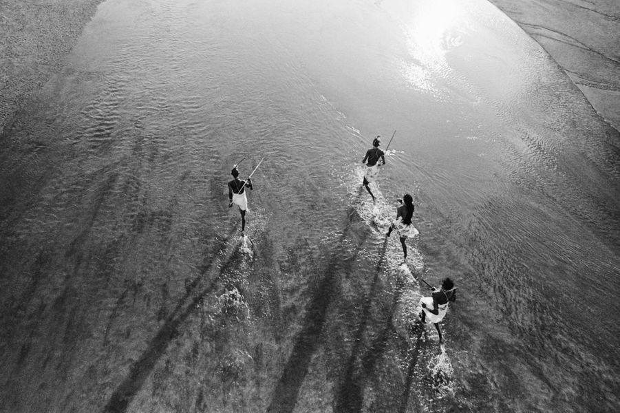 """De grandes étendues du territoire maasai en Tanzanie ont déjà été spoliées pour faire place à des fermes privées, des projets gouvernementaux, des parcs naturels ou des concessions de chasse. En mars 2013, le gouvernement tanzanien a annoncé une nouvelle zone de """"conservation"""" en territoire maasai, à Loliondo. Le chef de la communauté maasai, Samwel Nangiria, a indiqué à Survival que cette mesure signifiait la fin des Maasai et de l'écosystème de Serengeti. """"Nos ancêtres ont mené leur communauté au-delà des horizons les plus lointains. Leur force et leur pouvoir sont inscrits dans notre mythologie. Nous ne devons pas suivre le chemin de tous ces peuples qui ont disparu de la surface de la terre, fait valoir Lemeikoki Ole Ngiyaa. (...) Notre culture est bien vivante, ainsi que notre courage, notre fierté et nos nobles vérités""""."""