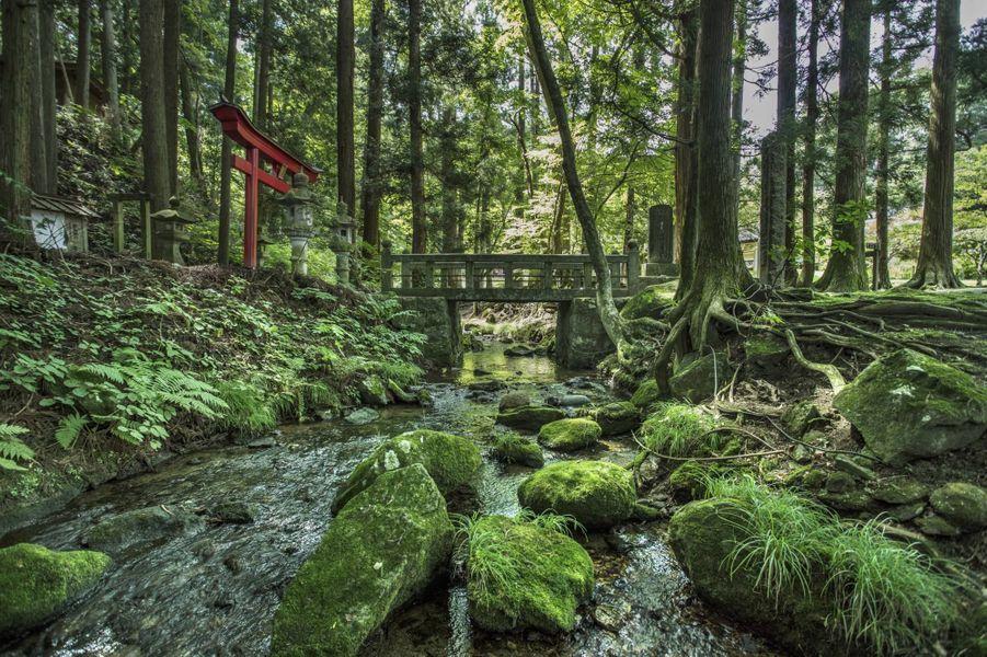 Le templeTerashita Kannon, une escapade verte et spirituelle