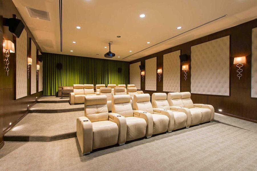 Dans les parties communes: une salle de cinéma.