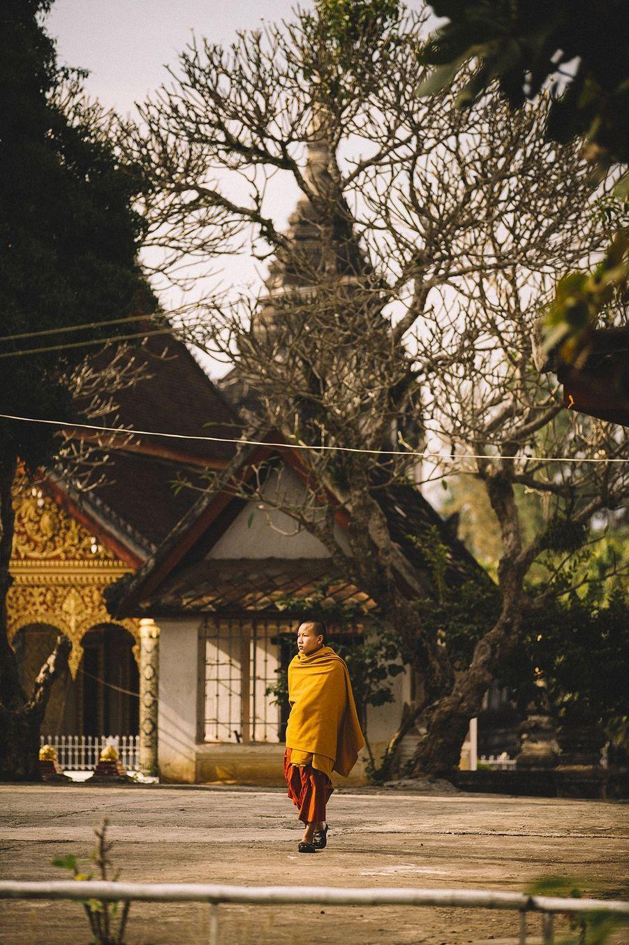 Statues àLuang Prabang (Laos).