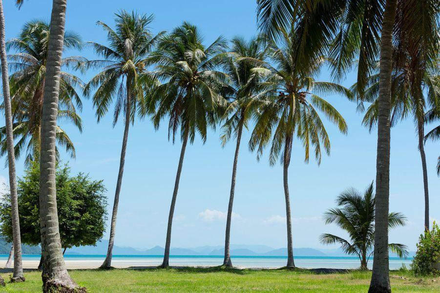 Koh Samui (Thaïlande).