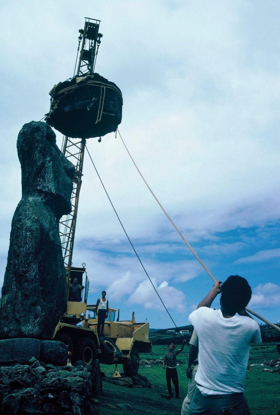 1968, sur le site de Tahai. Avec l'aide d'ouvriers chiliens présents sur le chantier de l'aéroport, l'équipe de Match avait œuvré pour relever cette statue couchée sur l'herbe. Et demandé à un artisan local de lui confectionner une nouvelle coiffe, la sienne ayant été brisée.