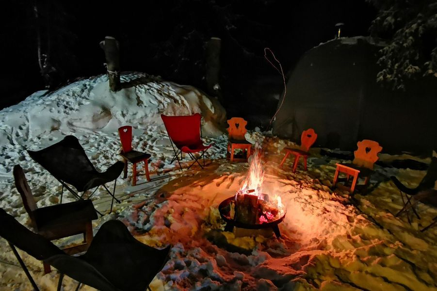 Activité n°4: Igloo into the wild.