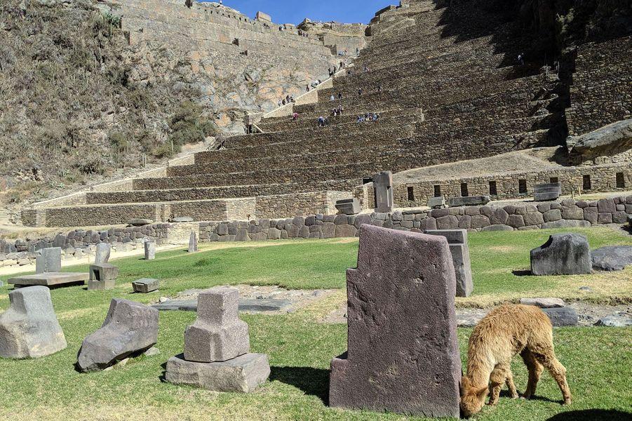 Ruines deOllantaytambo.
