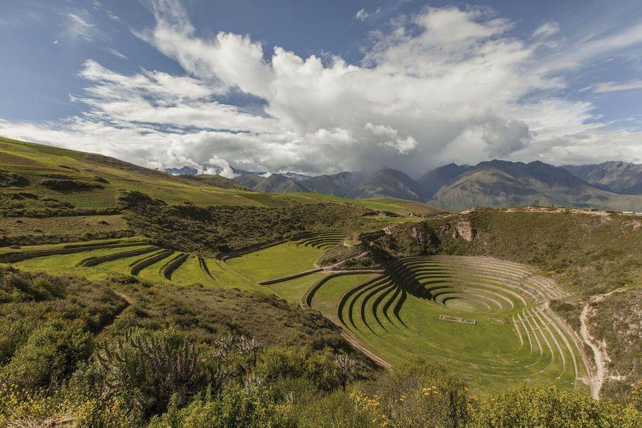 Les cercles concentriques de l'agriculture en terrasse des Incas à Moray.