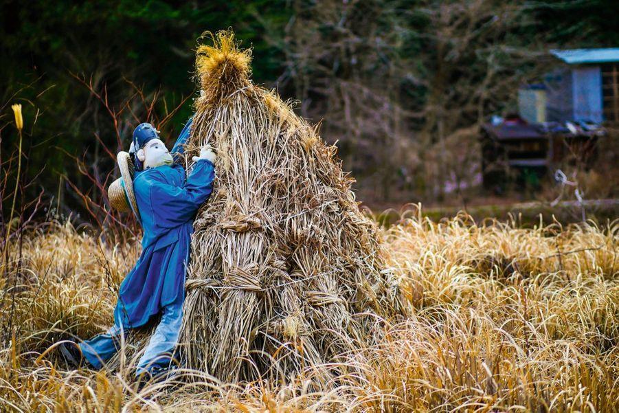 A Nagoro, les paysans ont quitté le village, mais, grâce aux poupées de l'artiste Tsukimi Ayano, on les retrouve dans des scènes de la vie quotidienne.