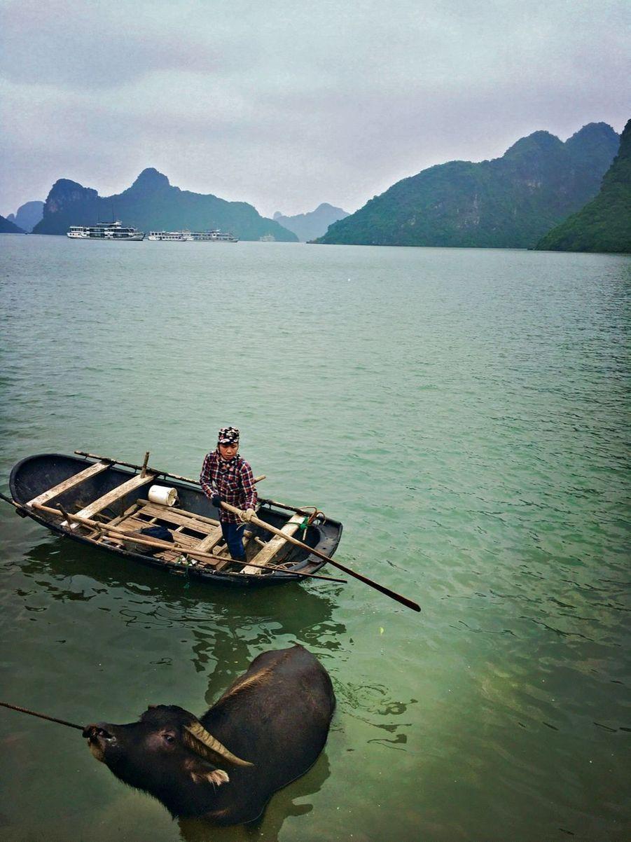 Au Vietnam, la baie d'Along a été classée Vestige historique et culturel par l'Unesco en 1994.