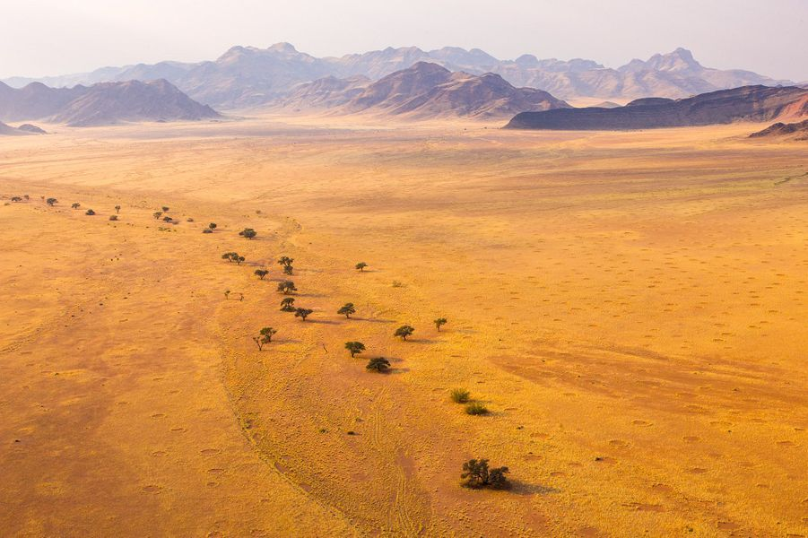Parc national du Namib-Naukluft (Namibie)