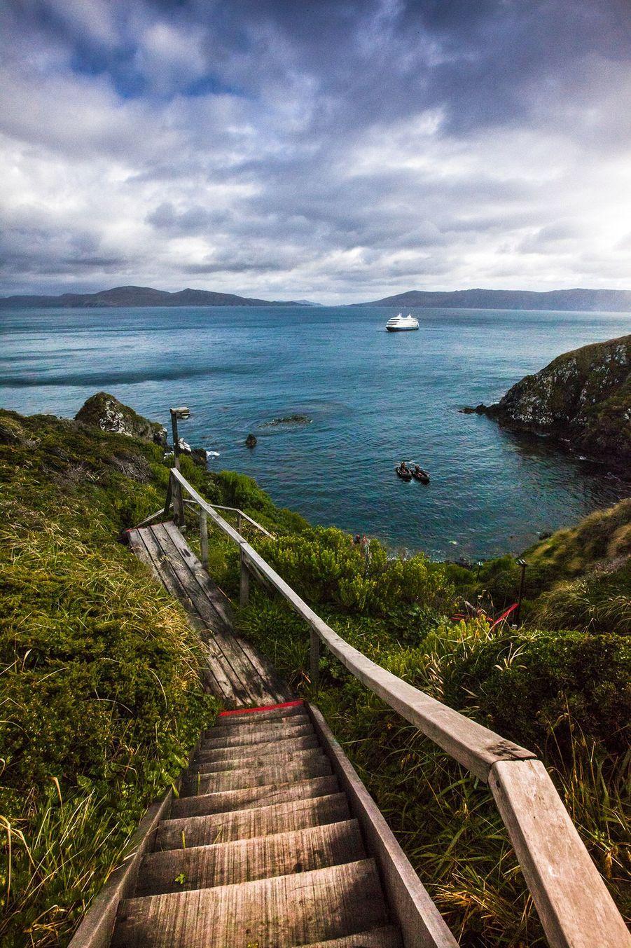 Prenez l'escalier qui mène aux coordonnées du bout du Bout du Monde : 55° 58′ 48″ S, 67° 17′ 21″O.Au loin l'Australis veille.