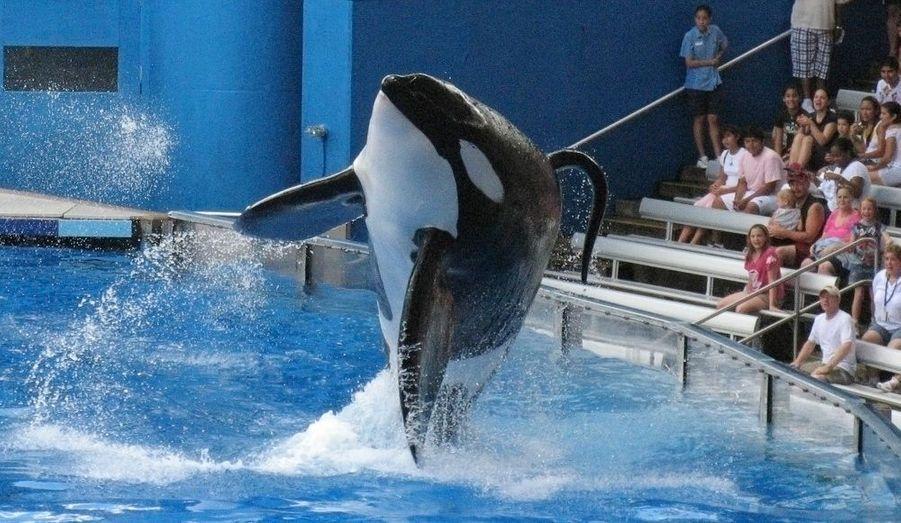 SeaWorld à Orlando en Floride
