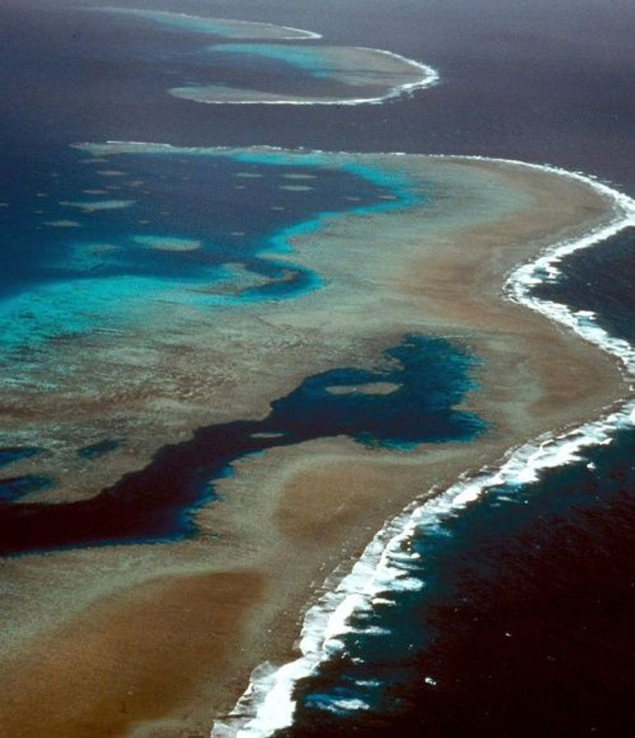 La grande barrière de corail est le plus grand récif corallien du monde avec une étendue de 2600 kilomètres. Elle est située au large du Queensland en Australie et possède plus de 400 espèces de coraux, 1500 espèces de poissons et 4 000 espèces de mollusques. Le site est surveillé en permanence par des scientifiques qui se préoccupent de la sauvegarde de cet environnement fragile face au réchauffement planétaire.