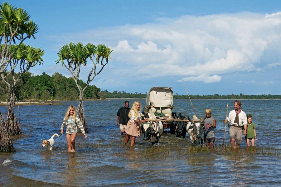 Sur le lac sacré Rasoamasay, dans le canal des Pangalanes : progression difficile pour Philae, 12 ans, Sonia, Alexandre et Ulysse, 9 ans, les bouviers Revel et Ericle chien Mario et les quatre zébus. Le 14 juillet 2016.