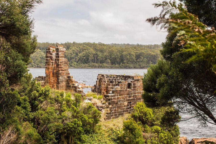 Les ruines de l'ancien dortoir des condamnés de Sarah Island au coeur de la Gordon River.