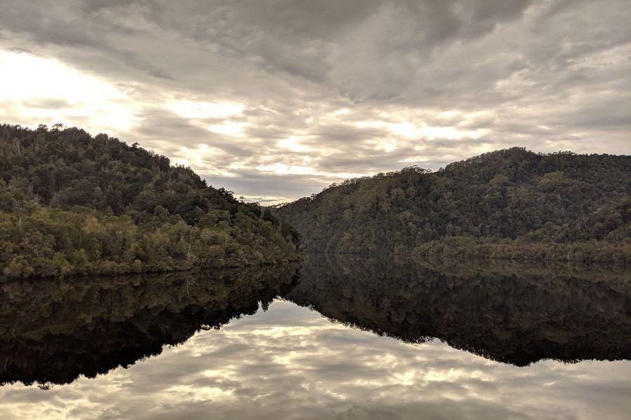 L'effet miroir de la forêt primaire aux arbres millénaires se reflète sur la Gordon River.