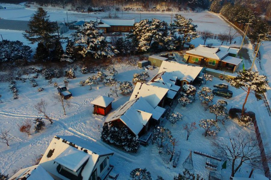 LaSimscabin Winter House