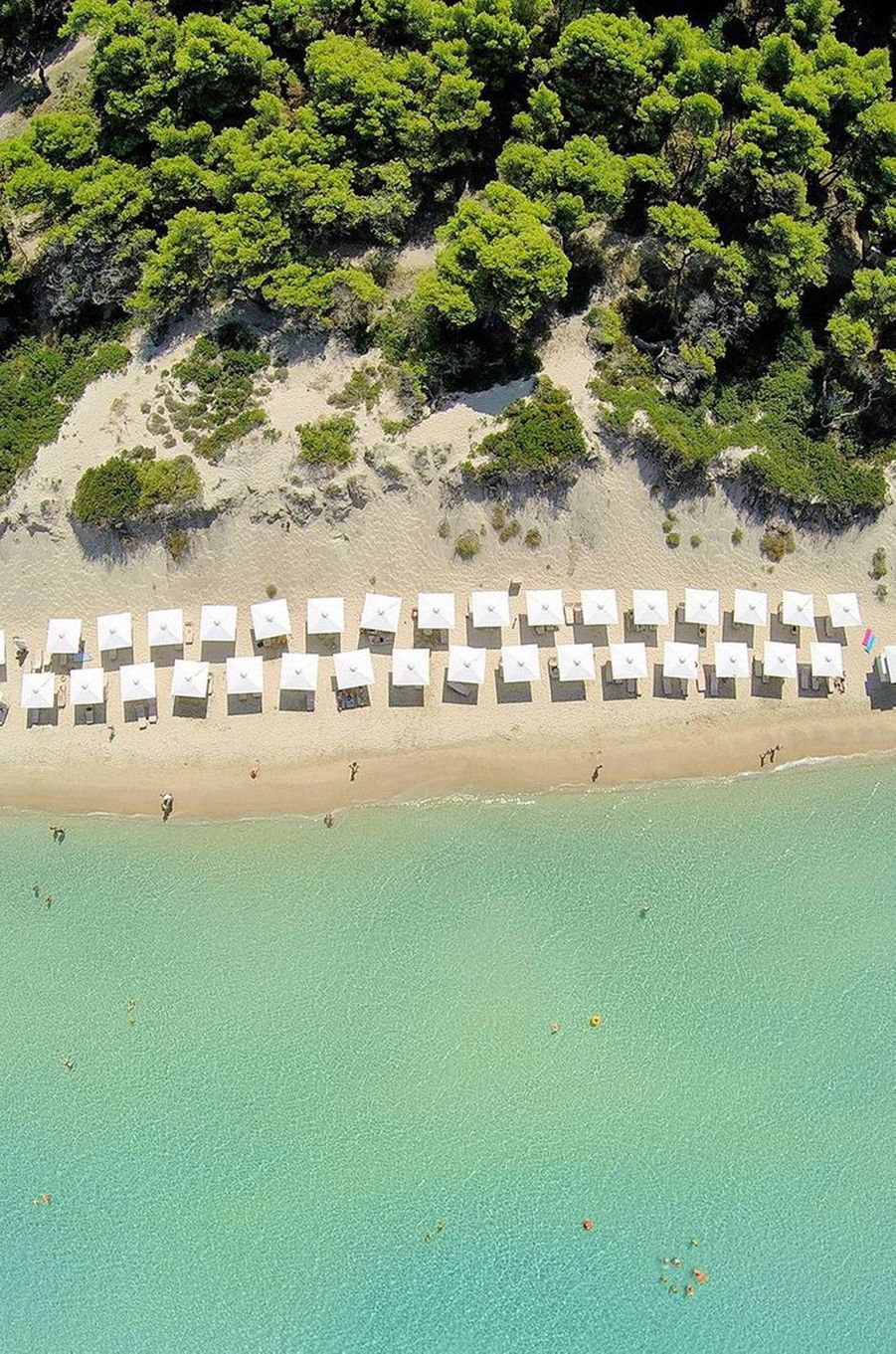 Sani Resort, en Grèce, Grand Prix du Meilleur resort d'Europe