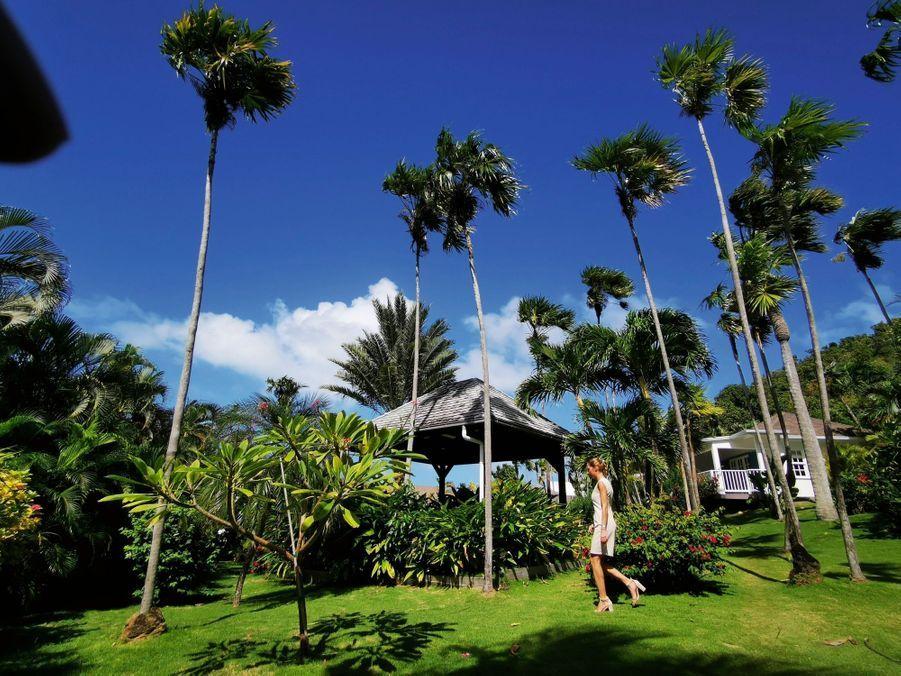 Le Cheval Blanc new-look : réception style colonial, esprit beach club près de la mer et palmiers pour une atmosphère jungle.