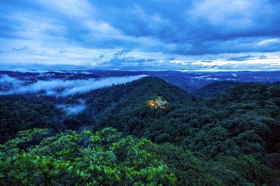 A la découverte du Mashpi Lodgeen Équateur, un cocon au-dessus des nuages...