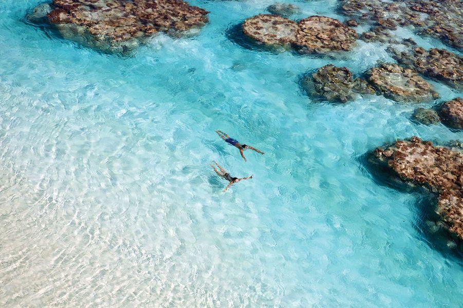 Le lagon et ses «patates» de corail