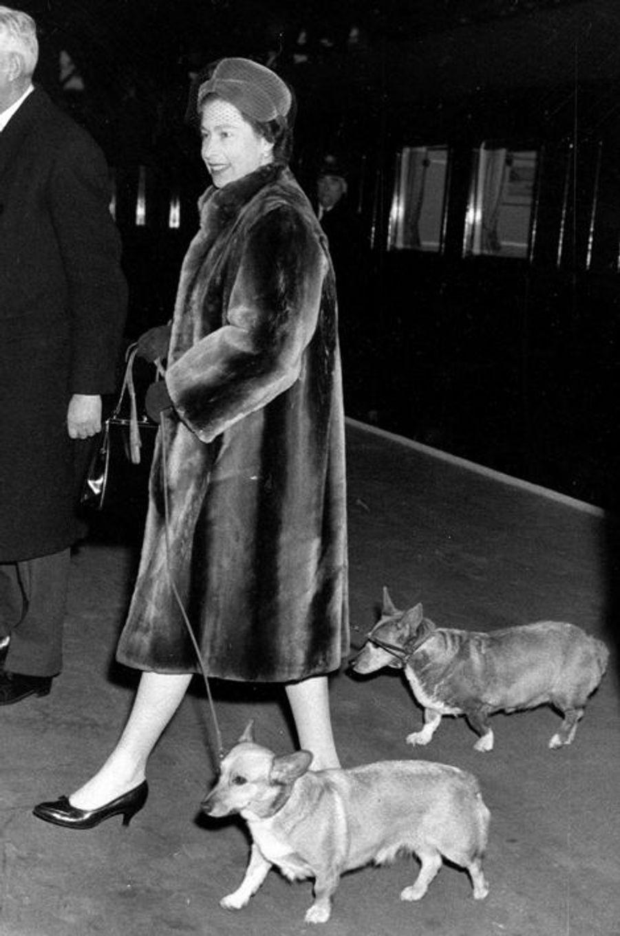 Elizabeth, le 18 janvier 1965