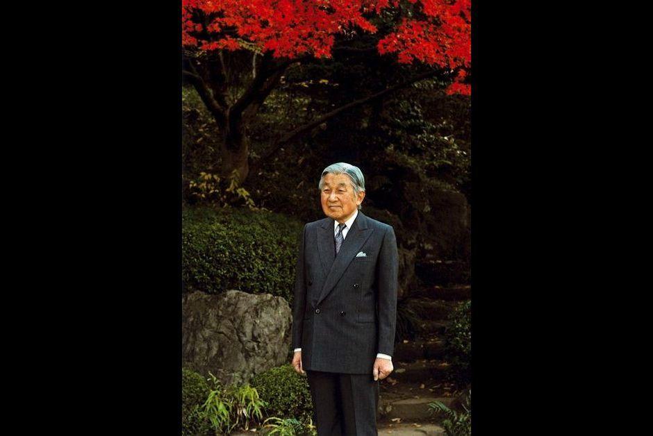 L'empereur Akihito du Japon au Palais impérial à Tokyo, le 9 décembre 2015