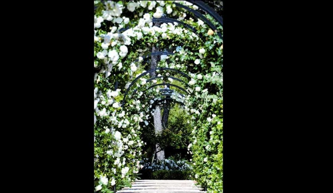 Jean mus un jardin en m diterran e - Un jardin mediterranee ...