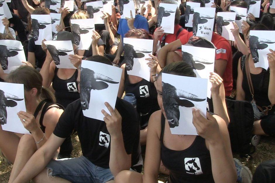 anti corrida succ 232 s de la manifestation 224 mont de marsan