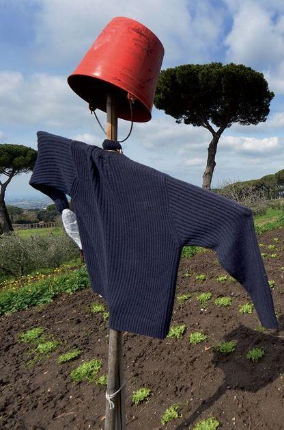 du bio pour le vatican visitez la ferme du pape fran ois. Black Bedroom Furniture Sets. Home Design Ideas