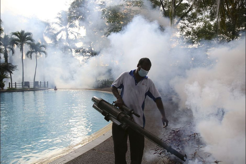 Contre les moustiques