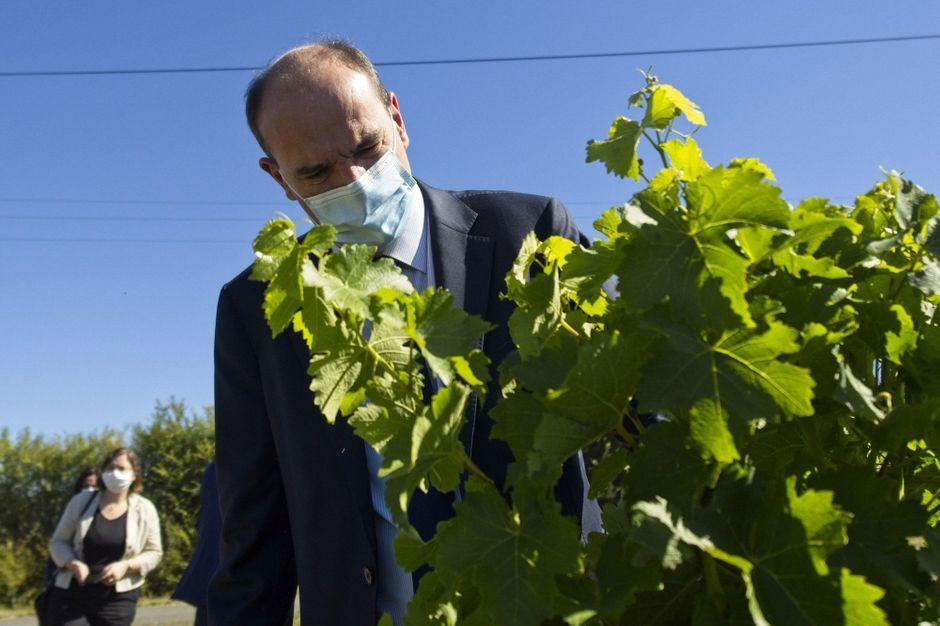 Jean Castex annonce 80 millions d'euros d'aides supplémentaires pour soutenir les viticulteurs
