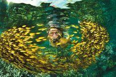 Ile de la Réunion : un paradis pour renouer avec la nature